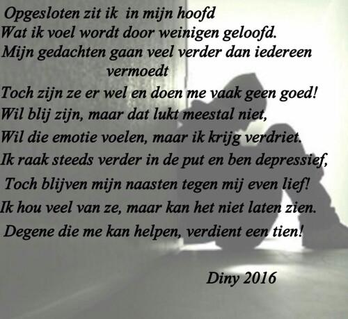Diny 2016